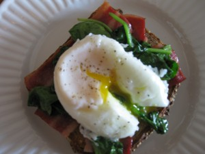Poached Egg on Wilted Spinach, on Turkey Bacon, on Multigrain Toast